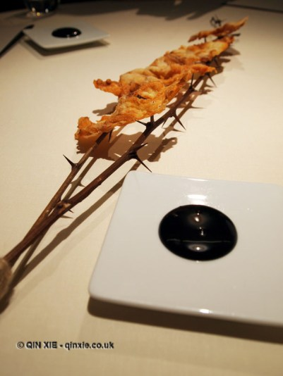 "Tendon, derives from Latin tendere ""to stretch""; honey mead, yolks and dipping ash, Mugaritz, Errenteria"