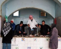 Bidding chair at fish market, Tunisia