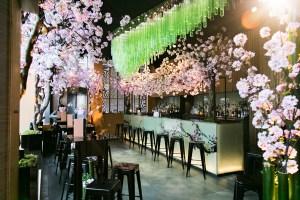 Sakura at Sake No Hana