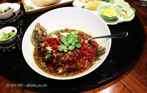 Western Shu treasury fish, Kuan Alley No 3, Chengdu, China