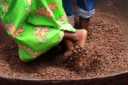 Polishing cocoa beans, Belmont Estate, Grenada