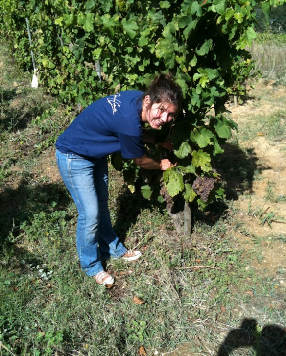 Laure Colombo in the vineyard