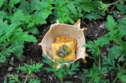 Pumpkin-parmesan butter biscuit, Azurmendi