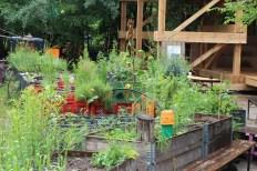 Princezzinnen Garten garden