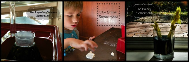 Science Experiments with kids