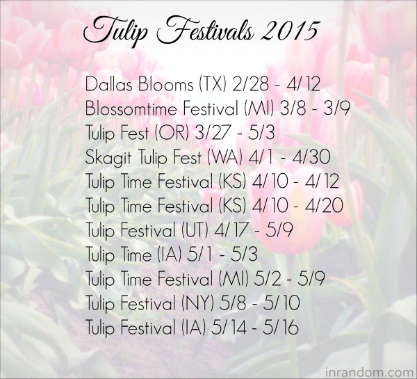 A list of most of the Tulip Festivals around the US, a little information about them and when they start!