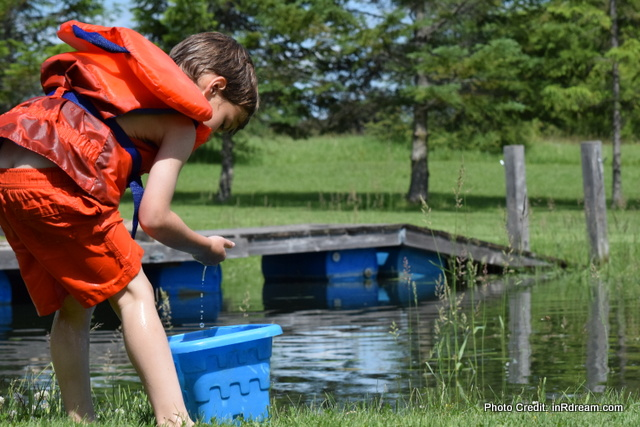 Catching Tadpoles, Splashing in the pond. Kawartha Lakes Pond, Country living in Kawartha Lakes