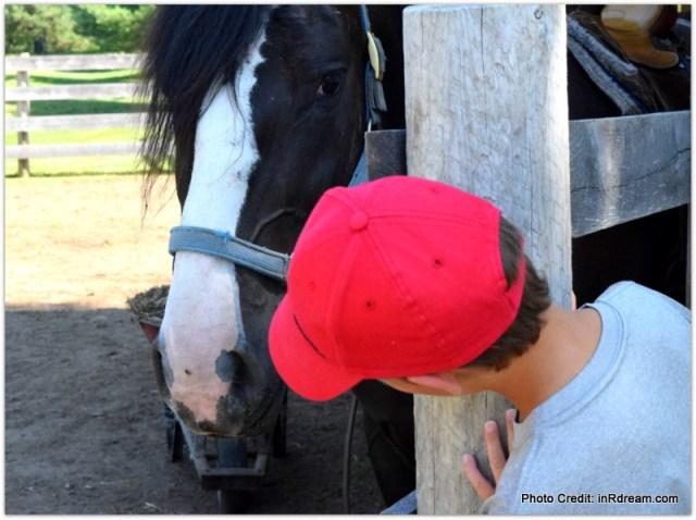 Horseshoe resort Ontario, Horse Barn