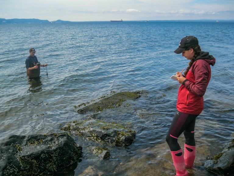 Échantillonnage en équipe dans la Baie de Sept-Îles