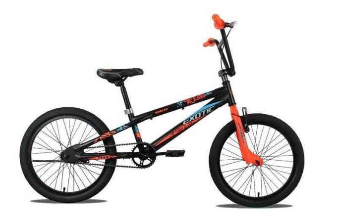 Sepeda Anak BMX Exotic 9982 GX