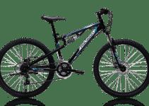 Sepeda MTB Polygon Rayz 1.0