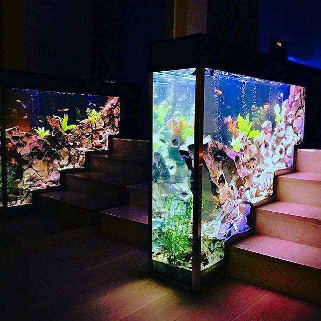 aquarium unik sekat tangga