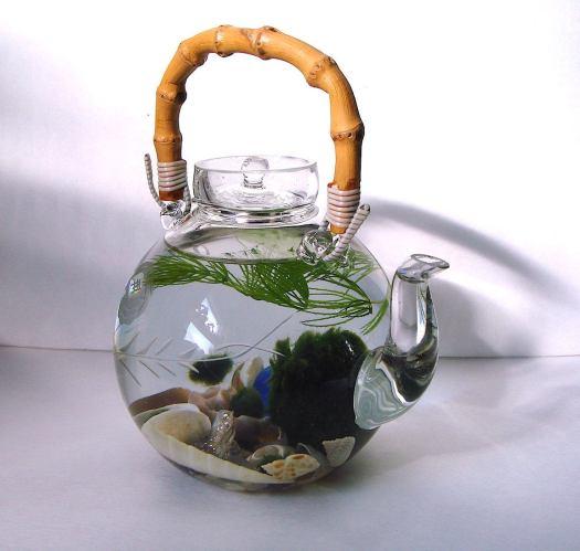 Aquarium Teko unik