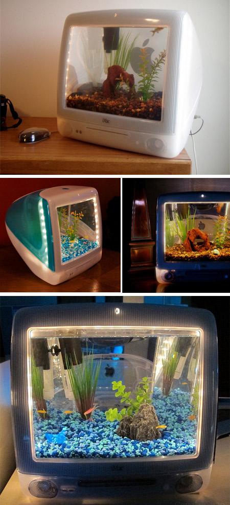 Aquarium unik dari TV atau Monitor Jadul
