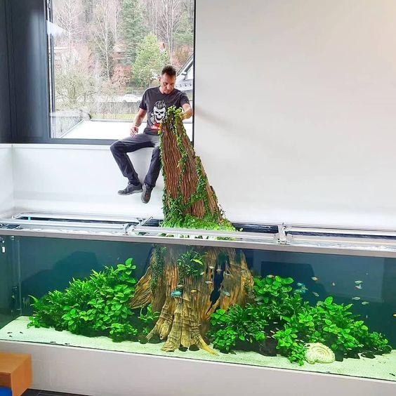 Aquarium besar: Aquascape Nature Style