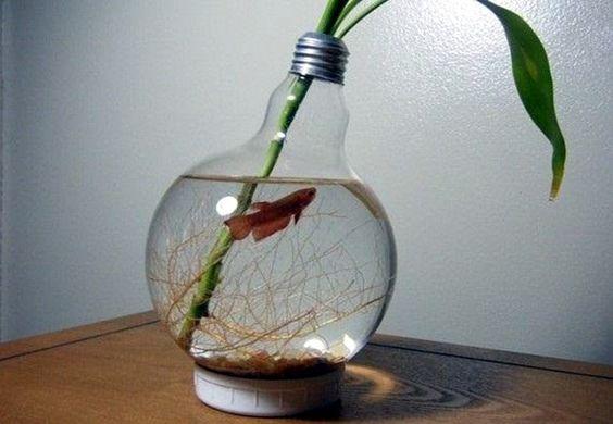 aquarium kecil bohlam lampu