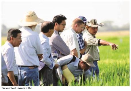 Upaya Kolaborasi antara Banyak Pelaku Penting untuk Teknologi Informasi dan Komunikasi dalam Pertanian