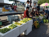 6. A group of foreigners selling fruits and vegetables at the Male' local market. Apart from working as vendors, foreigners are also involved in the primary industry of the country, sometimes working as fishermen and farmers.