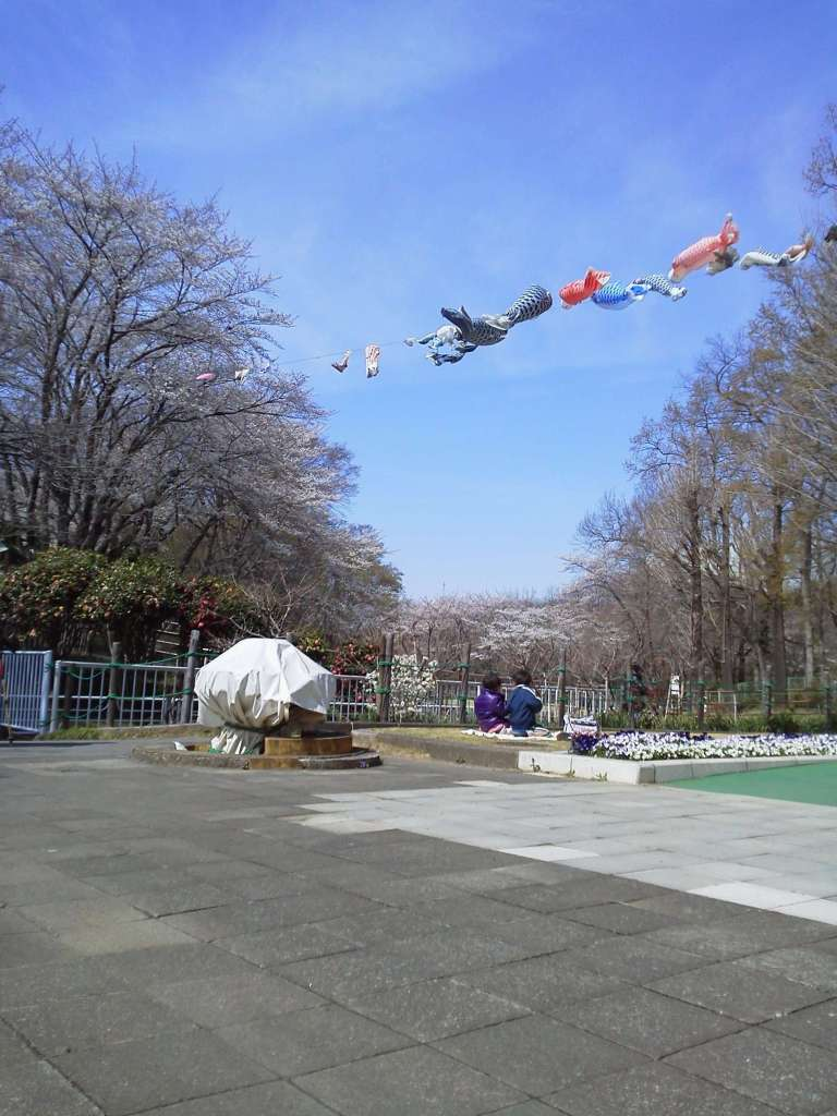 Flying carp at Kitamoto Children's Park kodomo