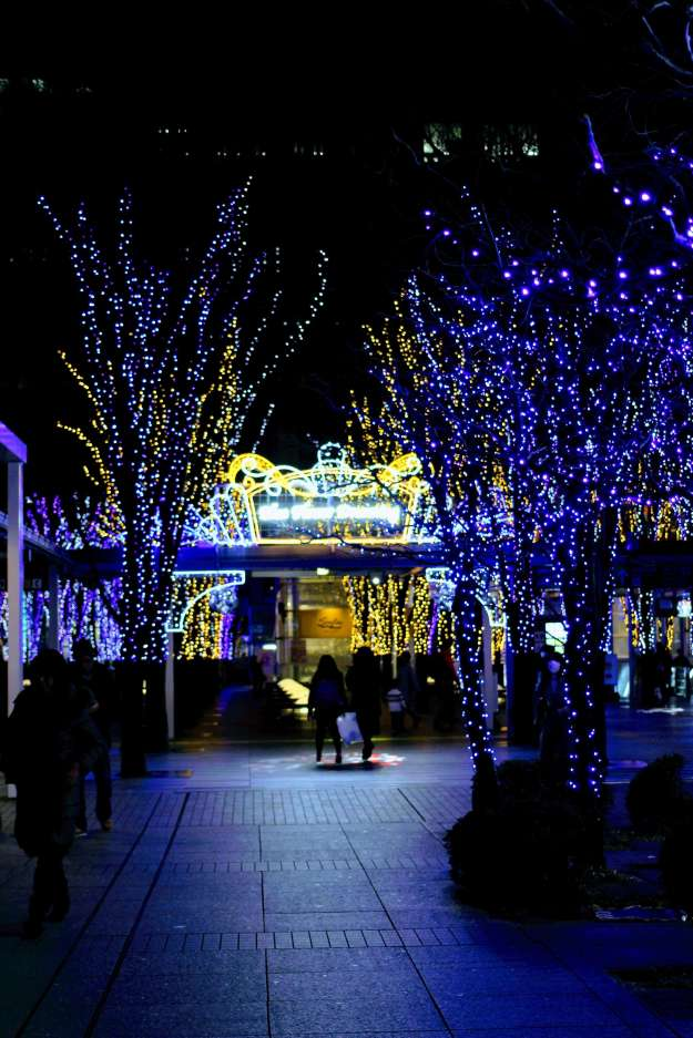 Winter Illumination at Keyaki Hiroba Saitama Shintoshin | OMIYA