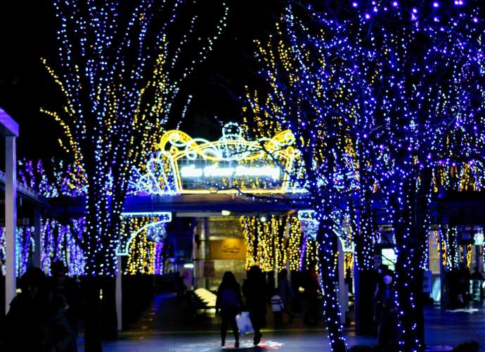 Winter Night Illumination Keyaki Hiroba (2)