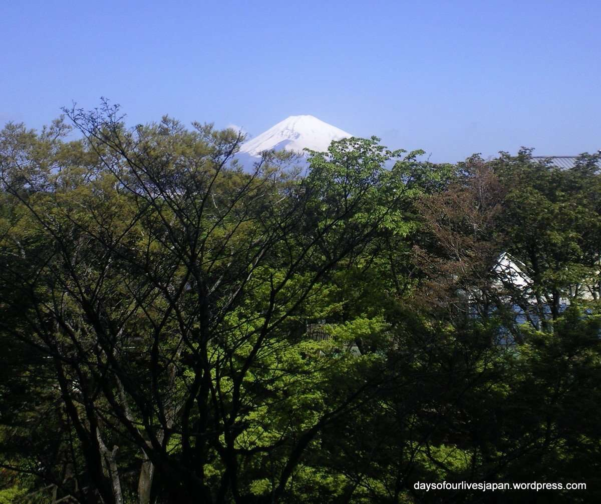 View of Mt. Fuji from Hotel Tokinosumika western / eastern fusion room Gotemba Kogen