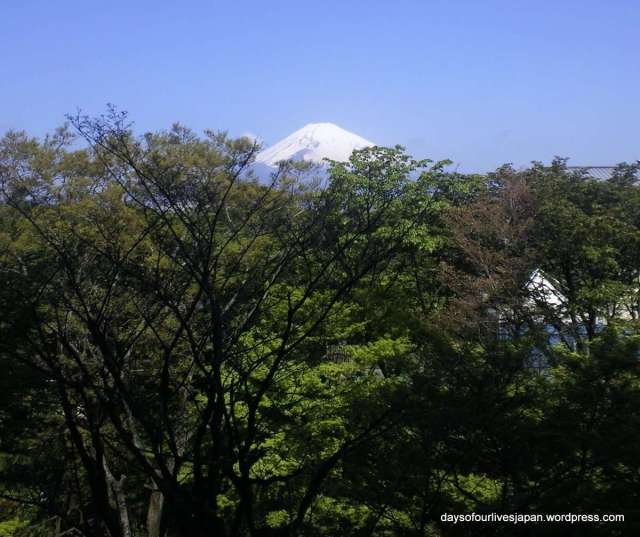 View of Mt. Fuji from Hotel Tokinosumika western / eastern fusion room