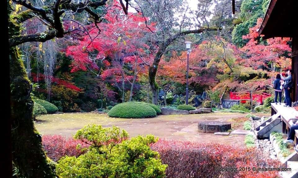 Kitain Temple Autumn leaves