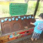 One of many learning areas in the Saitama Children's Zoo