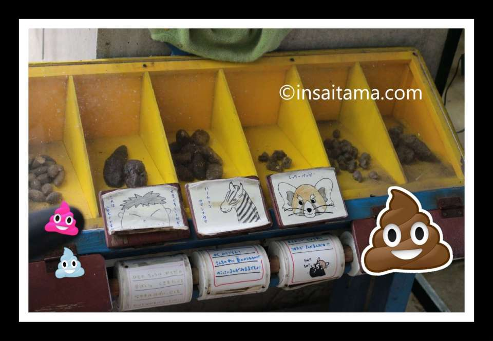 Saitama Children's Zoo; guess which animal the poo belongs to. The answer is in a box below on a toilet roll holder!