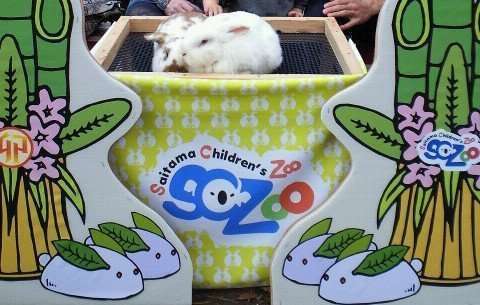 Saitama Children's Zoo | HIGASHIMATSUYAMA