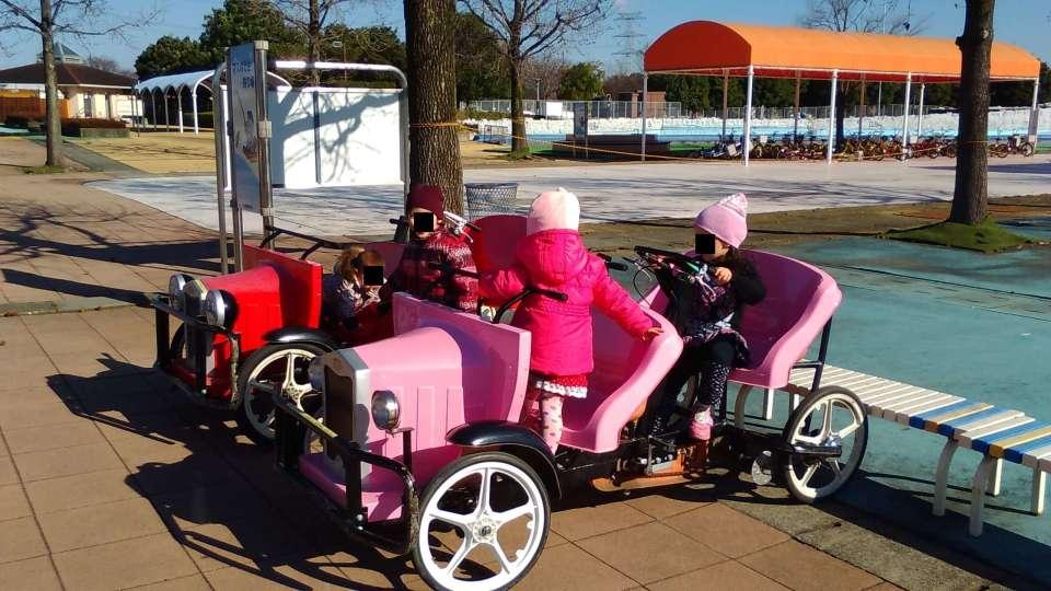 Pedal car at kazo hanasaki park santa kazo