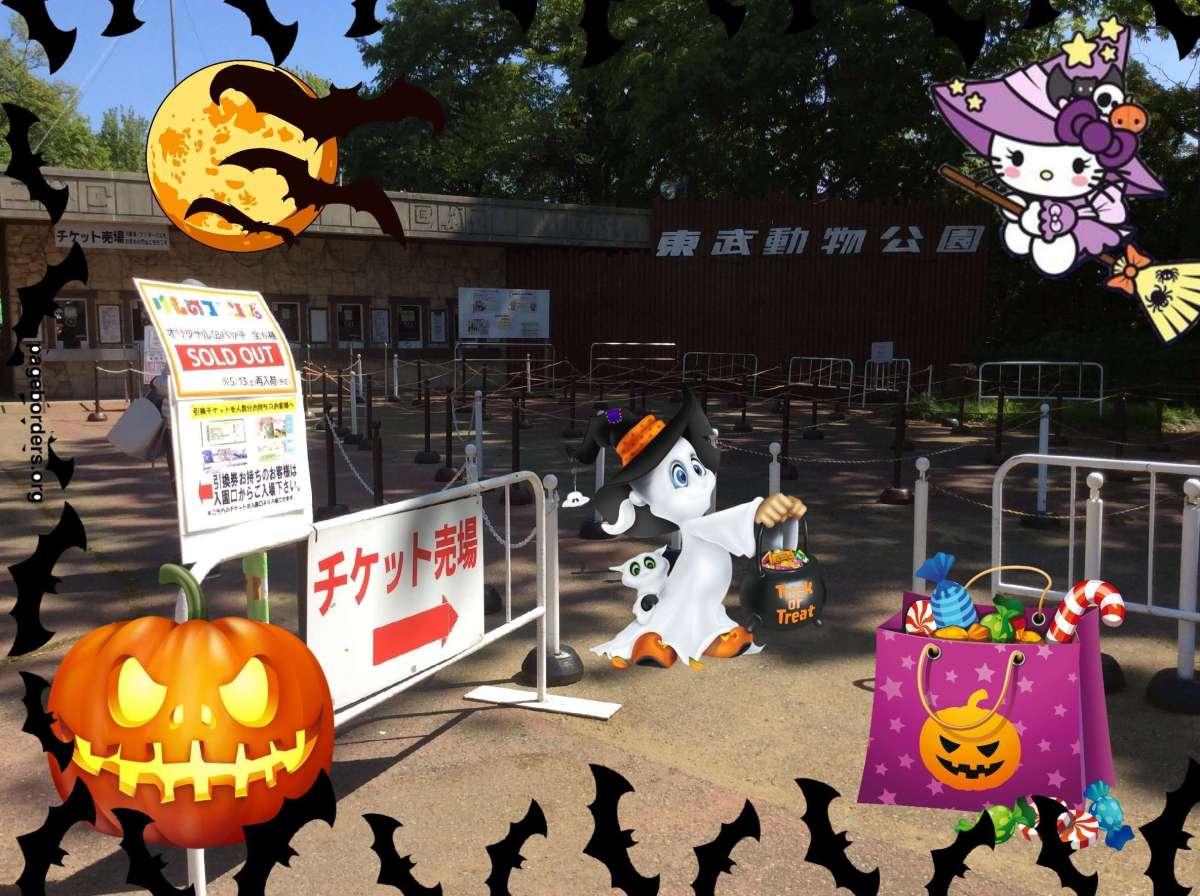 Halloween Night Party @ Tobu Zoo | MIYASHIRO