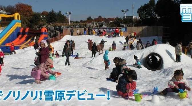 Snow Kingdom @ Seibu Amusement Park | Tokorozawa
