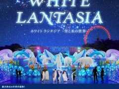 White Lantasia Night Illumination Seibu 2018