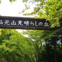 Saitama's longest roller slide at Miharashi no Oka Park | OGAWA