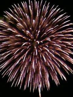 Kawaguchi fireworks Miysohi fireworks firework displays saitama