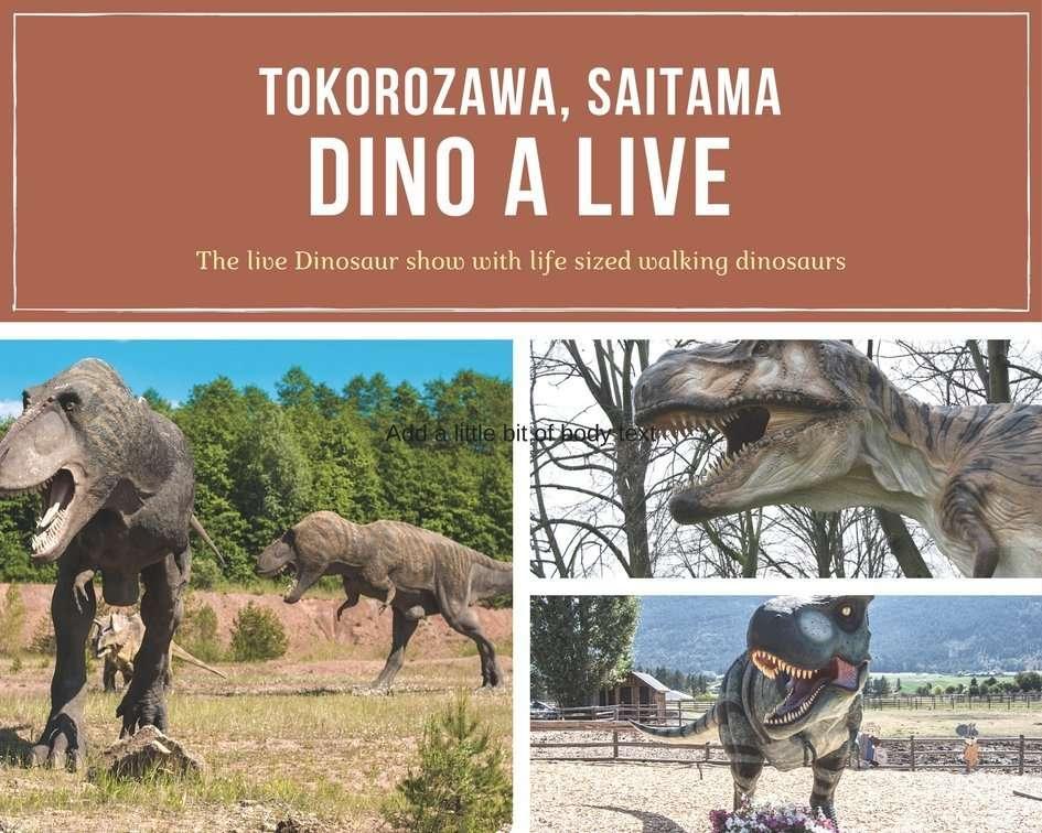 Dino A Live