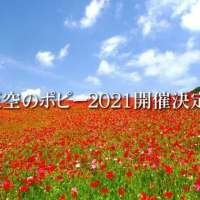 Poppies in the sky! Chichibu Poppy Festival 2021