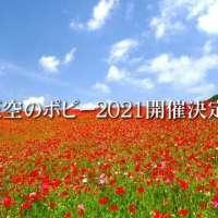 Poppies in the sky! Chichibu Poppy Festival 2021
