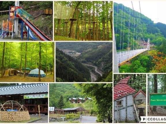 Mahoba no Mori Ueno skybridge Forest adventure ueno