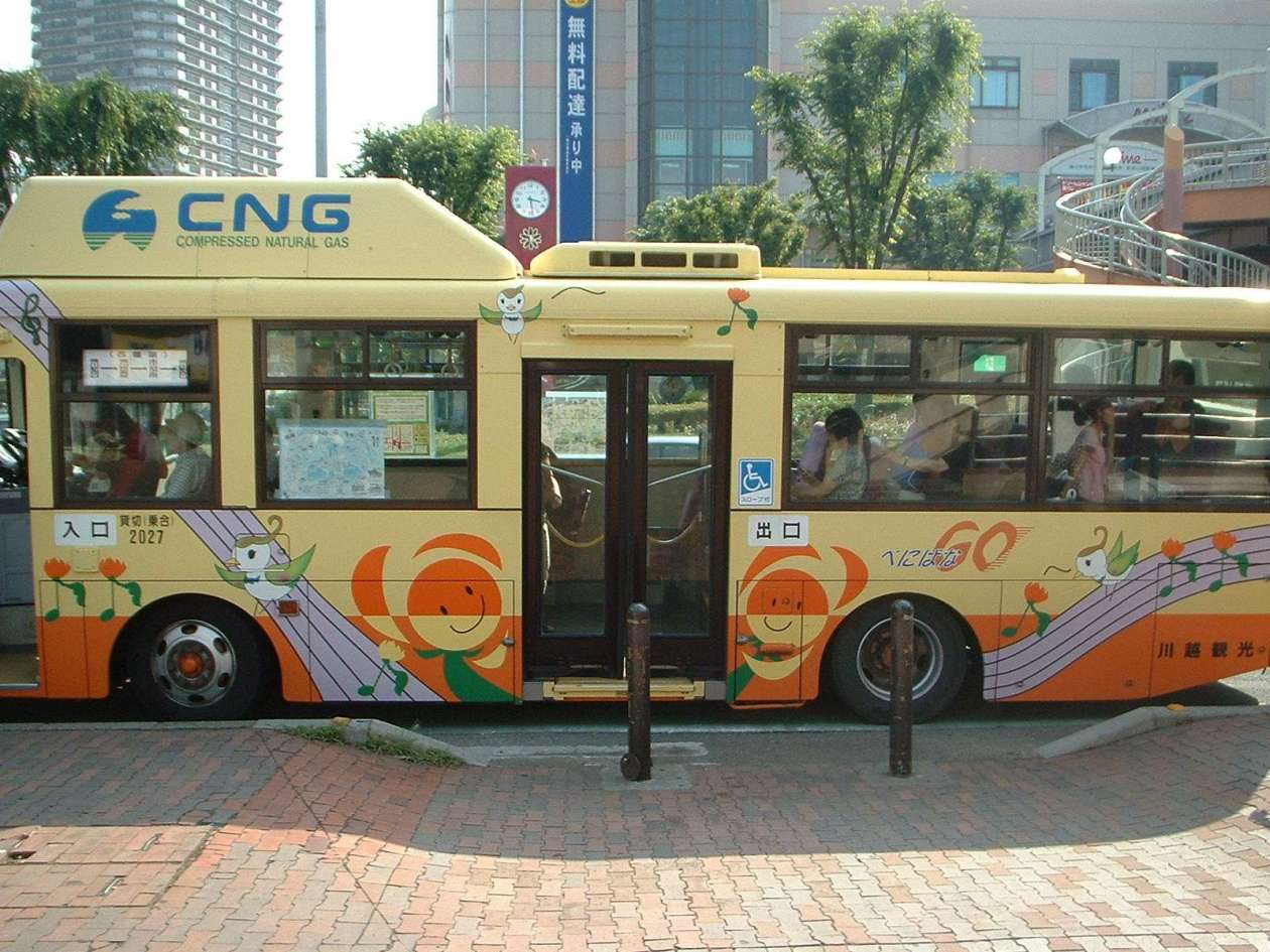 Safflower festival okegawa go bus