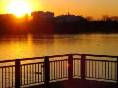 Sunset in kuki shobu park
