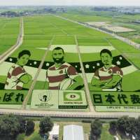 Rice Paddy Art | GYODA