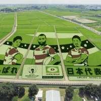 Rice Paddy Art in 2021 | GYODA