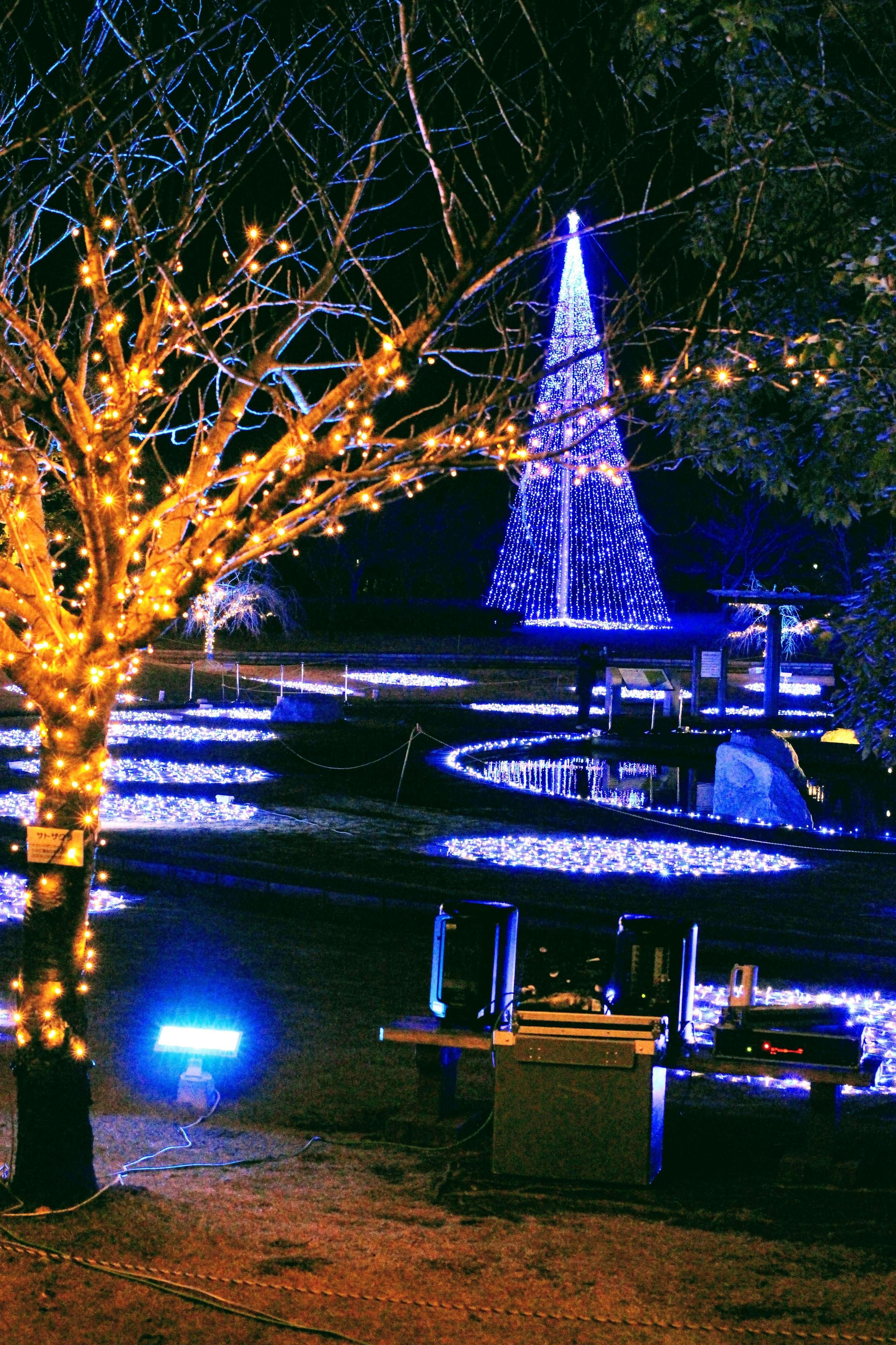 Heisei No Mori Winter Illumination