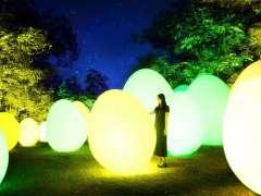 Team Lab Metsa Village illumination