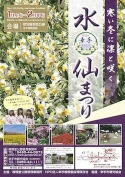 Gongendo Satte 2020 Daffodil Festival