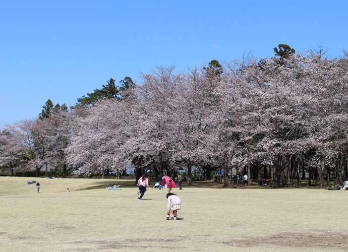 Saitama Norin Park