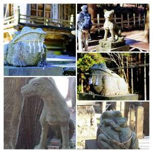 Only in Saitama: unusual Komainu